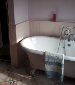 Baths and Showers - Plumbing Services